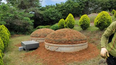 전남 무안군 묘지사초